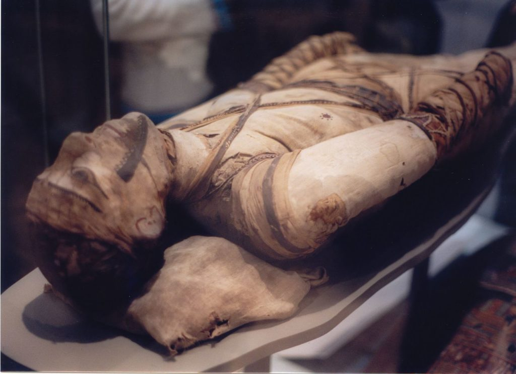 Египетская мумия с туберкулезом